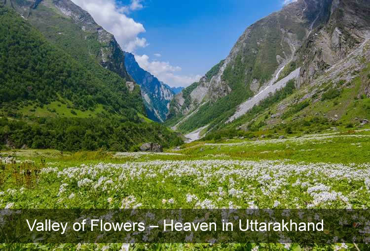 Valley of Flowers - Heaven in Uttarakhand
